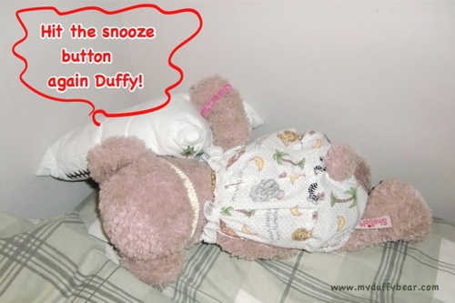 ShellieMay the Disney Bear practicing for Olympic Sleeping Competition