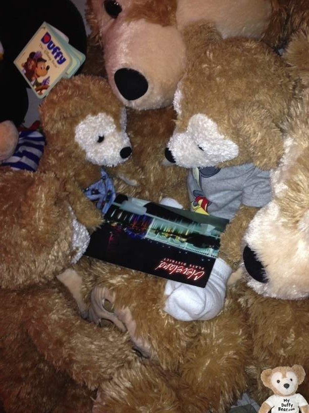 Duffy the Disney Bear's brother Charlie looks at post card too