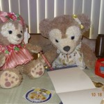 ShellieMay writes a special note for Duffy the Disney Bear Pillow Pet