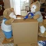 Duffy the Disney Bear packs shipping box
