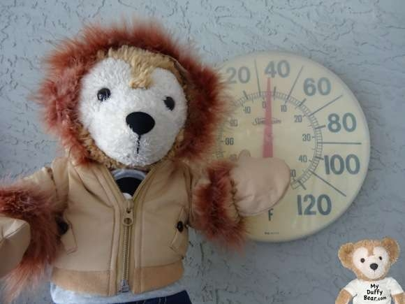 Duffy the Disney Bear checks thermometer