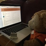 Duffy the Disney Bears fills his iTunes Playlist