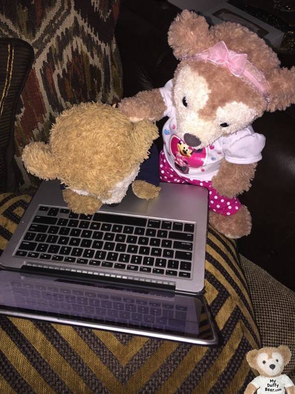 Duffy the Disney Bear fell asleep on his laptop