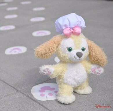 Cookie is on her way to be Duffy the Disney Bear's very new sweet-treats baking friend! She will live in Hong Kong Disney Land!